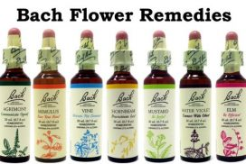 Personalised Bach Flower Remedies